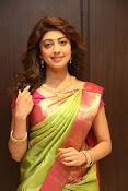 pranitha glam pics in saree-thumbnail-14