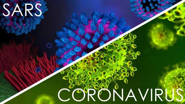 sars vs corona virus