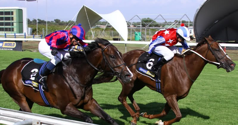 Kenilworth horse racing betting online campingplatz bettingen am main river