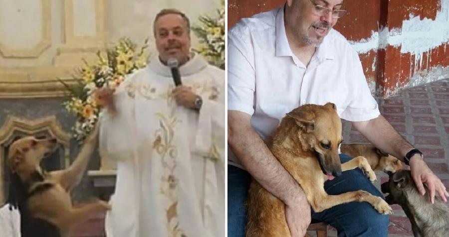 Padre leva animais abandonados pra missa e promove adoção