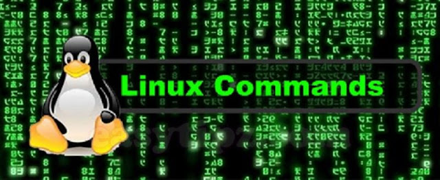 (Linux Command Line) Part 5 - Other Useful Command Line in Linux