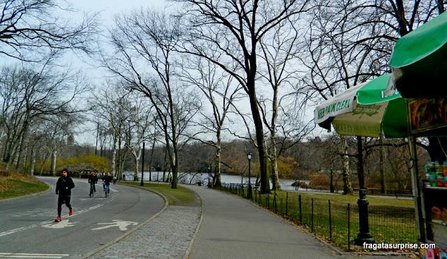 Pessoas se exercitando no Central Park, Nova York