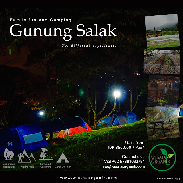 Family fun and Camping (Gn.Salak)