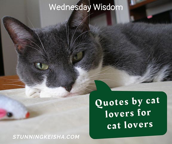 CK Presents More Wednesday Wisdom
