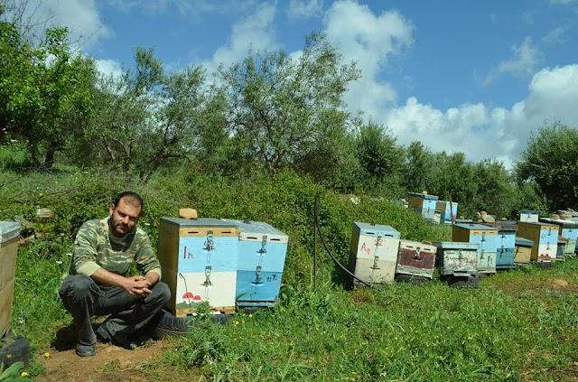 Μεταφορά μελισσιών σε μικρή απόσταση 200 μέτρα