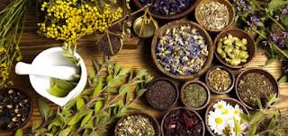 فوائد العلاج بالأعشاب