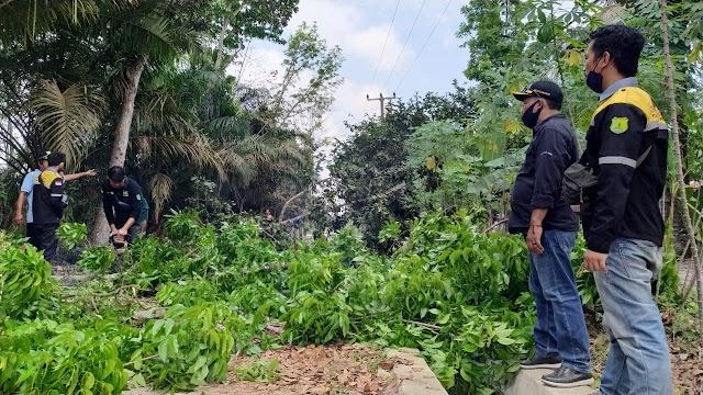 Bersih-bersih Area Jaringan MEP, Warga Mendis Kompak Tebang Ranting Pohon
