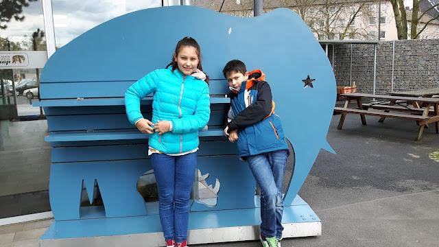 Kölner Zoo - Reiseziele für Familien