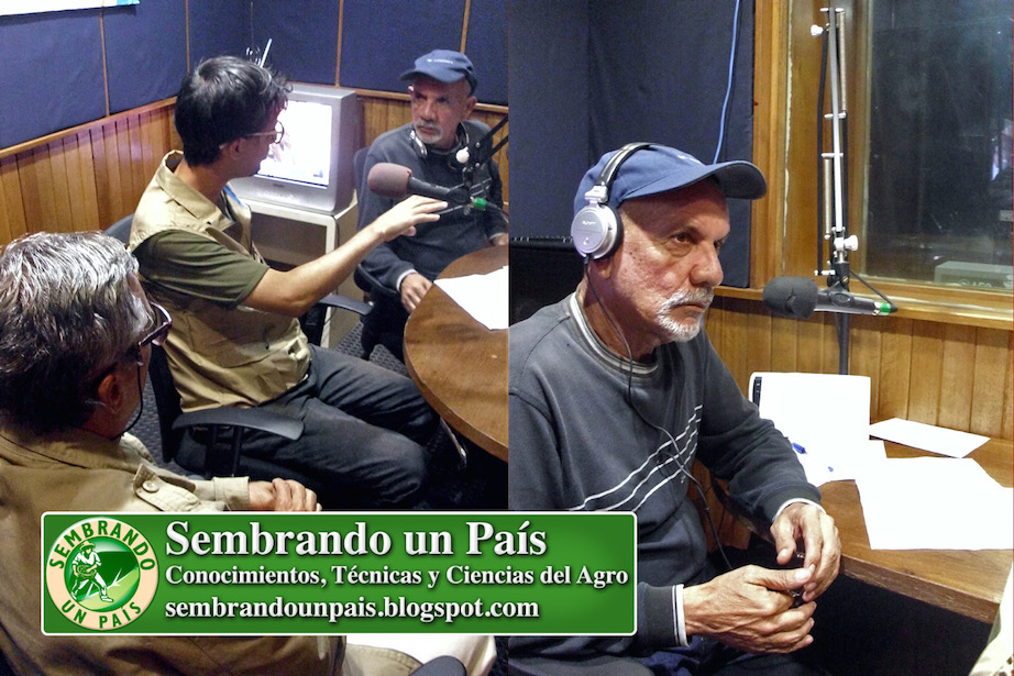 Carlos Batatín entrevistando al Equipo de Sembrando un País