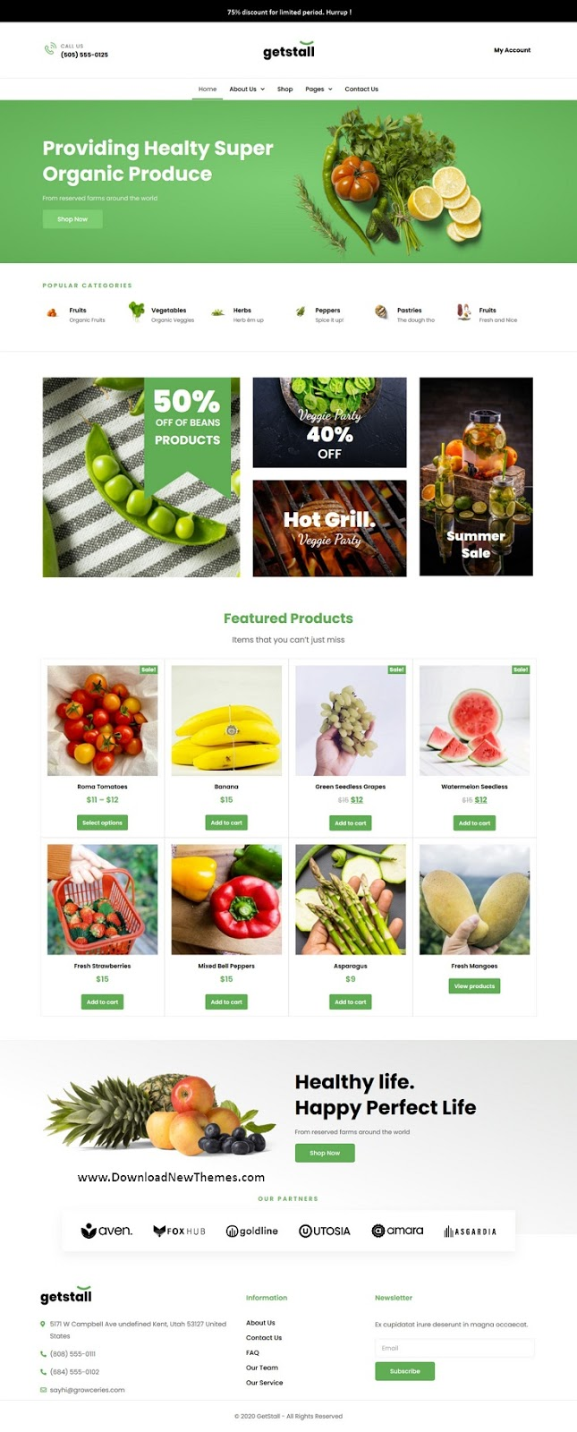 Best Grocery Shop Elementor Template Kit