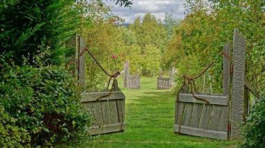 Jardines en Tasmania, inspiración y paisaje