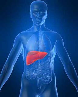 karaciğer büyümesi hepatomegali
