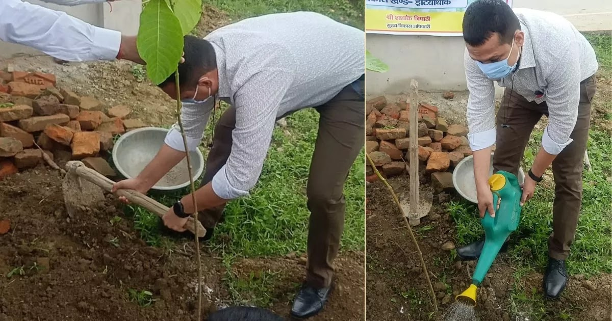 2 Million People In India Plant 250 Million Trees To Combat Climate Change And Aim To Cover Over 30% Of The Entire Country By 2030