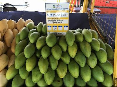 Harga Pasaran Malaysia Mangga Thong Dam Burma