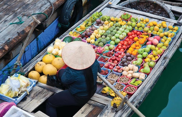 Vietnam Family Tours in Mekong Delta 5