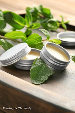 Lemon balm salve for cold sores in small tins