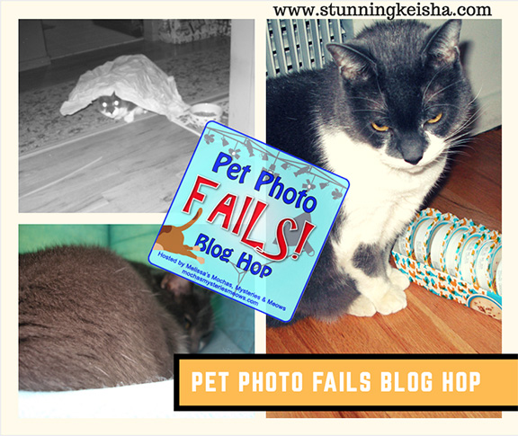 Photo Fails That are NOT My Fault