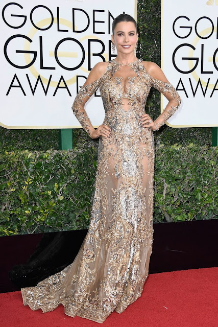Sofia Vergara Wear Sexy Sheer Nude Dress At Golden Globes 2017