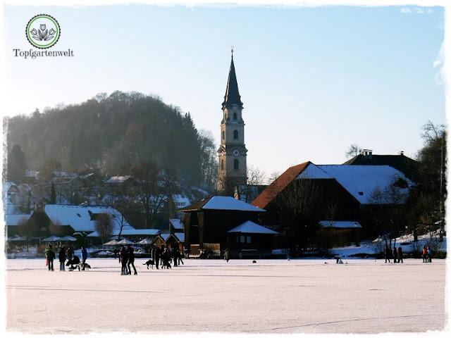 Gartenblog Topfgartenwelt Eislaufen: Blick auf die Stiftskirche Mattsee, zugefrorener See