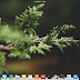 Selamat datang Elementary OS: Linux Ala Mac yang Ringan & Cantik