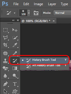 History Brush Tool Option in Photoshop