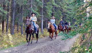 Arizona Horse Properties explain why Prescott is a perfect place to ride your horse.