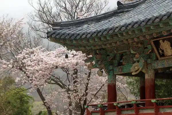 Things to Do in Busan : Beomeo-sa Temple