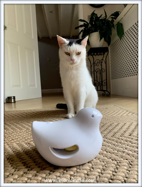 What's In The Box ©BionicBasil® Peek-a-Bird Electronic Cat Toy - Smooch