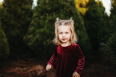 Toddler Portrait in Christmas Outfit in tree farm for Holiday Mini Photo Session