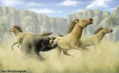 cavalos, ursos, fósseis, megafauna, Arctotherium wingei, Equus neogeus, Tocantins, gruta do urso, paleontologia, fóssil, pesquisa, ciência, extinção, mamíferos, aurora do Tocantins, Ameghiniana