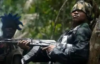 Gunmen Kidnap Abia State Commissioner's Father