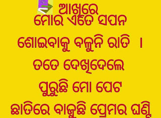 odia-shayari-love-birds