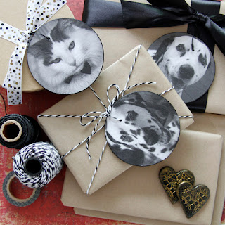 Dalmatian DIY craft projects for dogs and dog-lovers