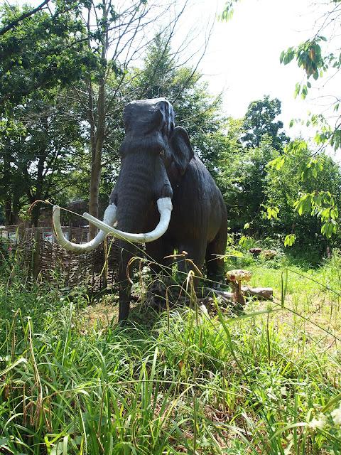 Godstone Farm, Surrey Review - Dino Trail - Wooly Mammoth