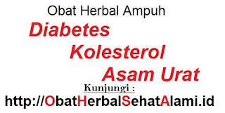 Obat penurun gula darah diabetes,kolesterol,asam urat alami herbal