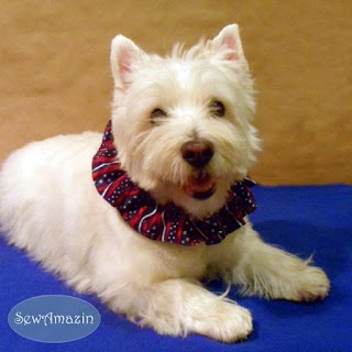 Star Spangled Stripes Patriotic Dog Scrunchie Ruffle