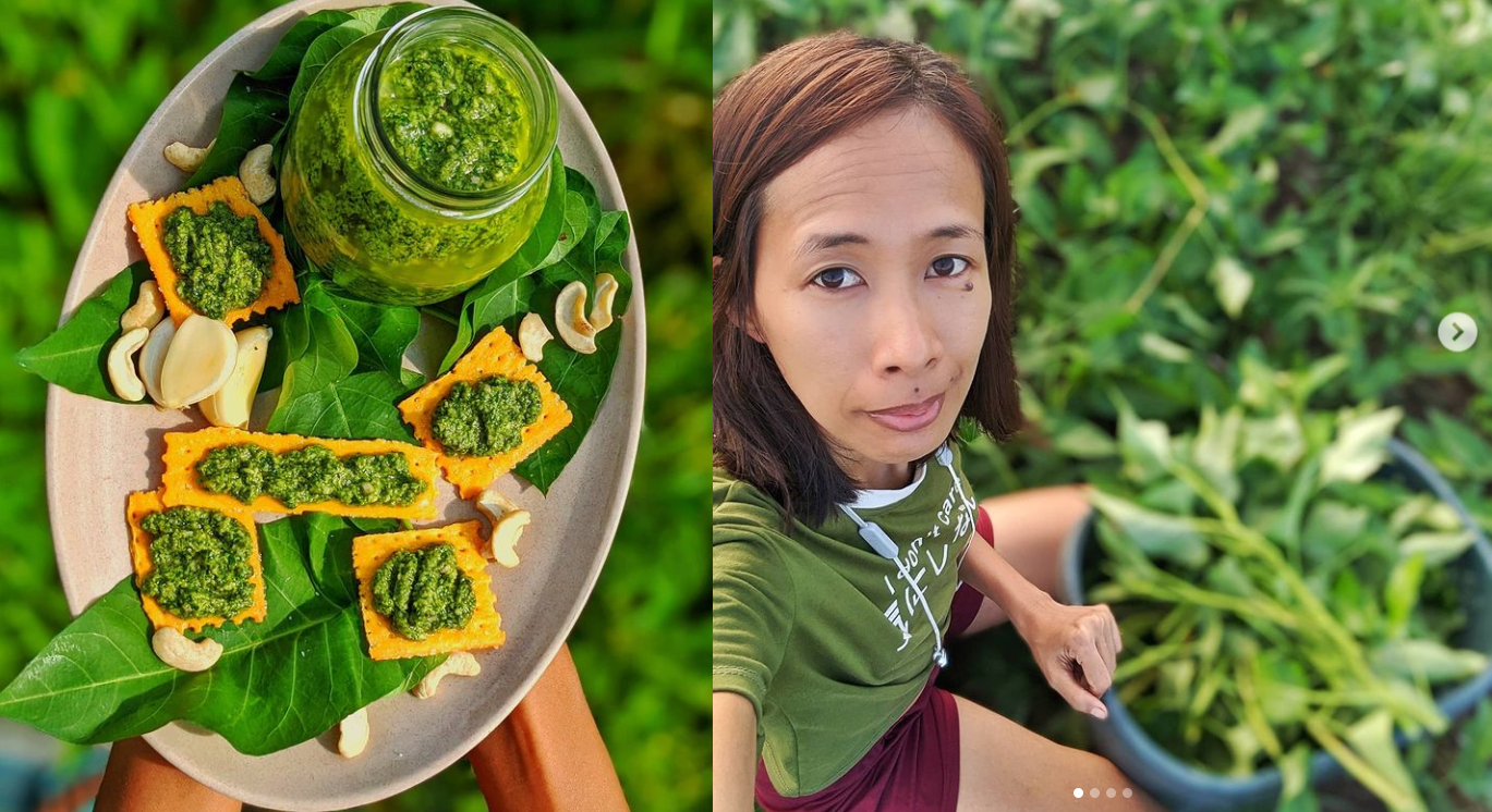 kangkong pesto recipe vegan