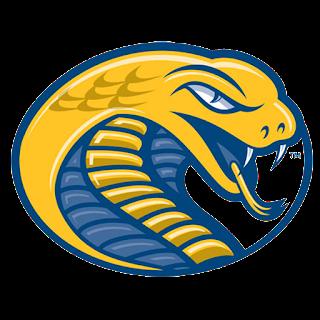 Logo DLS 17 ular kobra