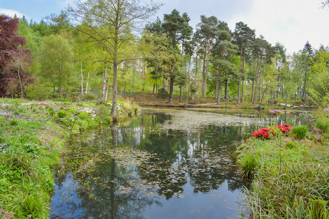 Himalayan Garden and Sculpture Park lake surrounded by trees and red flowers