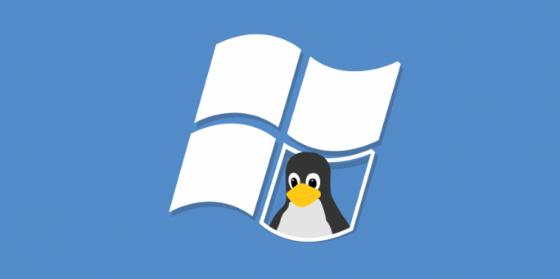 Windows Linux kernel