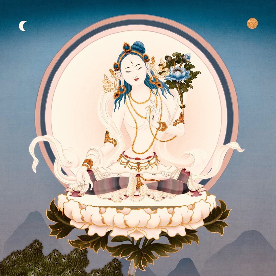 Dharma: 2019
