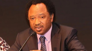R-APC: HOW BUHARI, GOVERNORS CAUSED CRISIS – SHEHU SANI