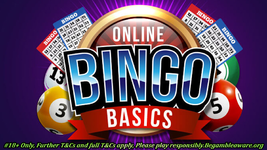 Best Bingo Games Online