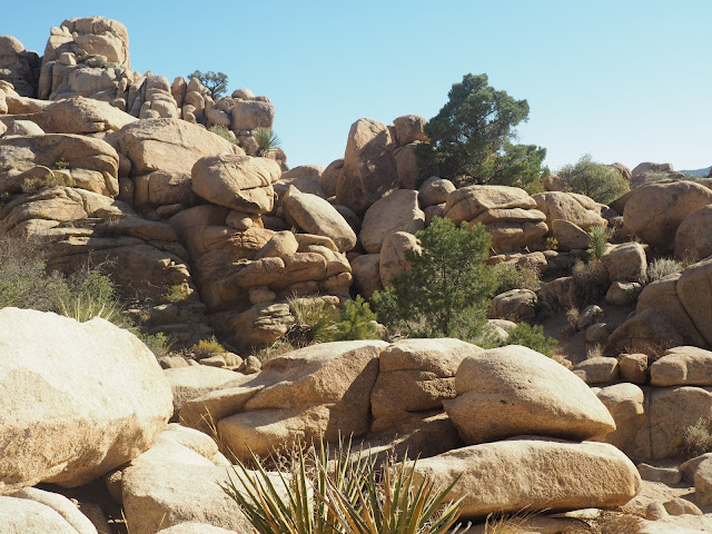 Rocks in Joshua Tree National Park, California