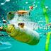 Llaman a participar en consulta sobre residuos marinos y microplásticos