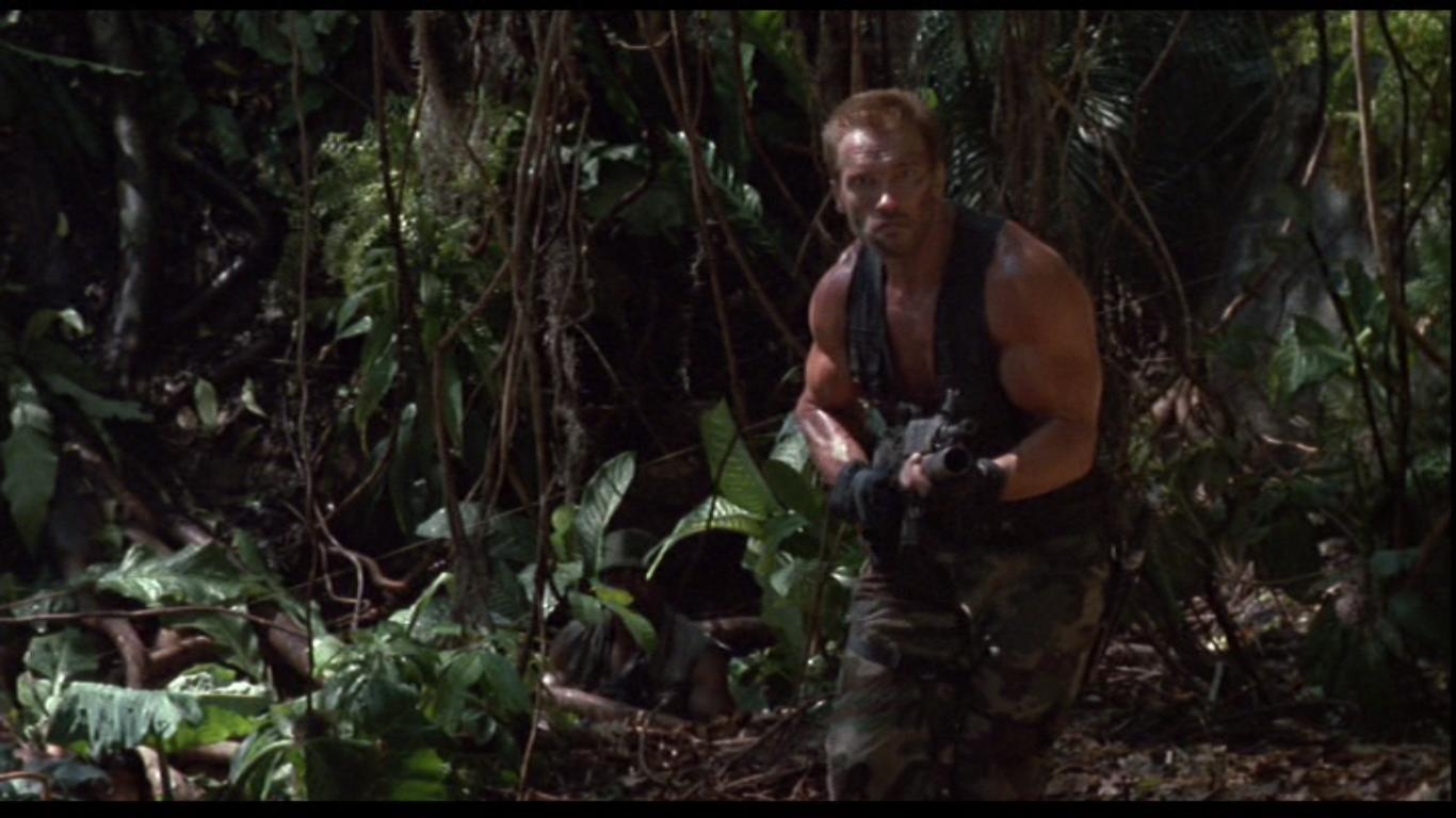выявлены тщательно два охотника в джунглях имеются