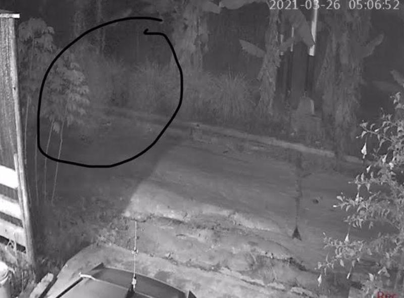 """Geger """"Hantu Putih"""" Terekam CCTV Mondar-mandir di Rumah Pejabat Damkar"""