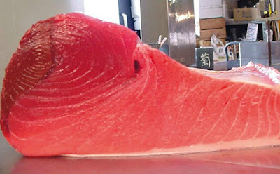 The Best Qualities Frozen Tuna Naka with Red Color