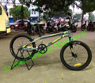 BMX Rascal Pro XL by Thrill Tabibitho