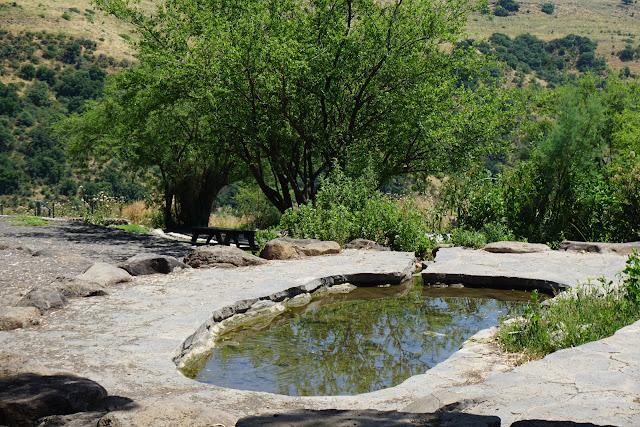 מעיין כנף - מעיינות בדרום רמת הגולן